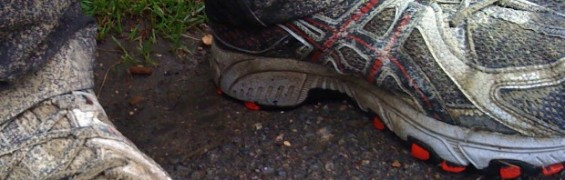 ASICS offer for Muddy Plimsolls clients
