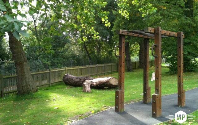 Outdoor Fitness, monkey bars in London trim trail